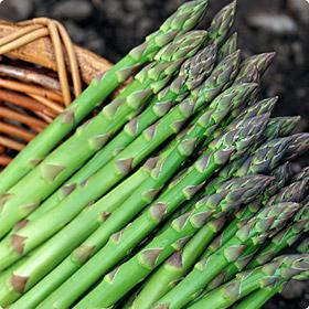 グリーンアスパラ アスパラとは??? アスパラは春から夏にかけて食卓を彩る野菜として、い...